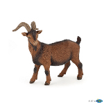 51162 - Brown billy goat