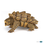 50179 - Alligator Snapping Turtle