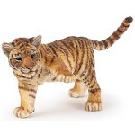 50184 - Tiger with raised paw