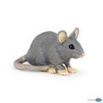 50205 - House mouse