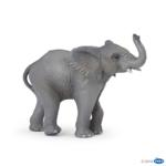 50225 - Young elephant