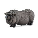 Pot-bellied pig - PRE-ORDER NOW