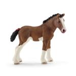 13810 - Clydesdale foal