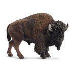 14714 - American bison